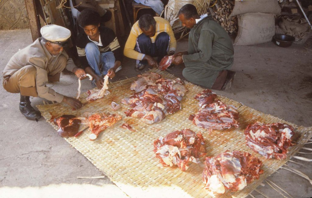 WP Ethiopia family 24