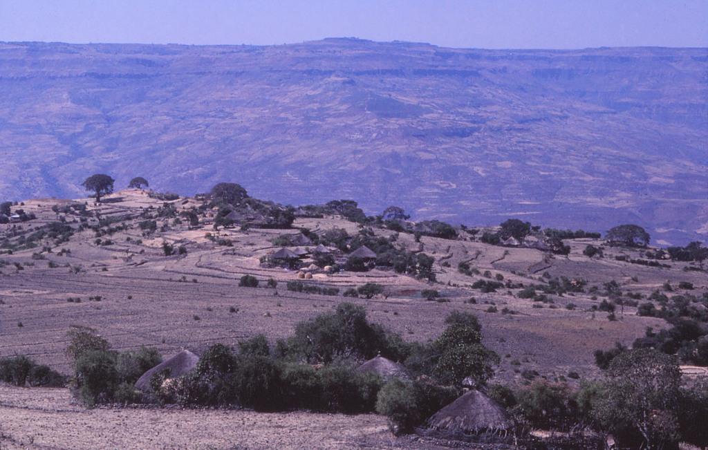 WP Ethiopia General 06